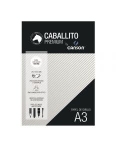 Block Caballito & Canson A3 180 Grs 20 Hojas